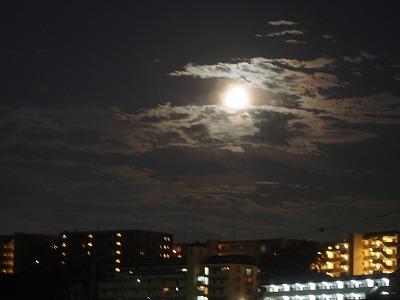 満月 (1).jpg