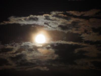 満月 (2).jpg